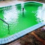 温泉 緑色